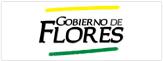 intendencia_flores